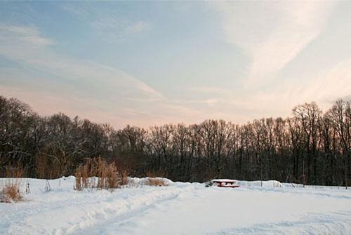 Lärjeåns trädgårdar, december 2010