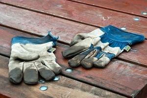 Arbetshandskar behövs i trädgårdsarbetet. Foto: Isolde Berner