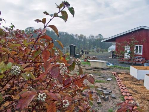 Lärjeåns trädgårdar, lite tidigare i höstas. Foto: Bengt Moberg