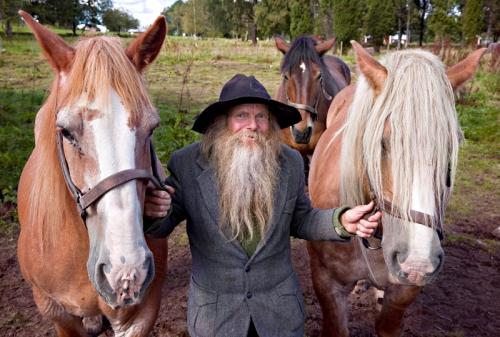 Hästmannen_sista_striden_ok