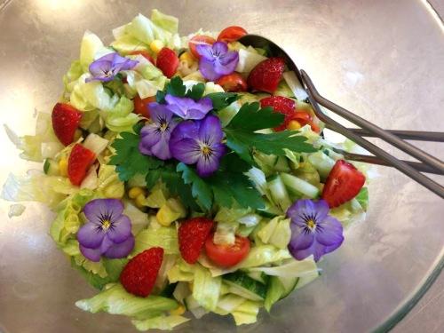 Lärje_ätbara blommot_s krstic