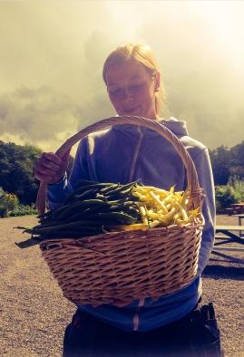 Linnea. trädgårdsmästare på Lärjeåns Kafé & Trädgård, har blivit rikligt bönhörd i år. Foto: Lydia Söderberg