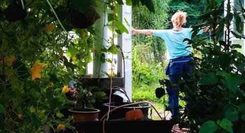 Trädgårdsmästare