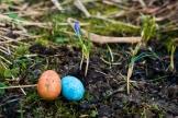 Färgglada påskägg finns att upptäcka lite här och var. Foto: Johanne Pernklint