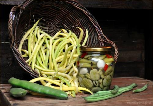 Nygjord pickles med några av sina ingredienser, bondbönor, vaxbönor och brytbönor. Foto: Monika Lindqvist